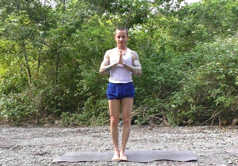yogi41